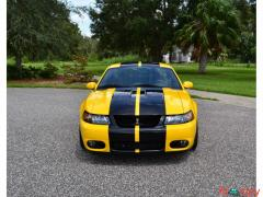 2004 Ford Mustang SVT Cobra Power