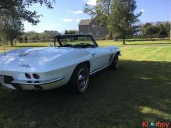 1965 Chevrolet Corvette 327 Convertible V8 - Image 7/20