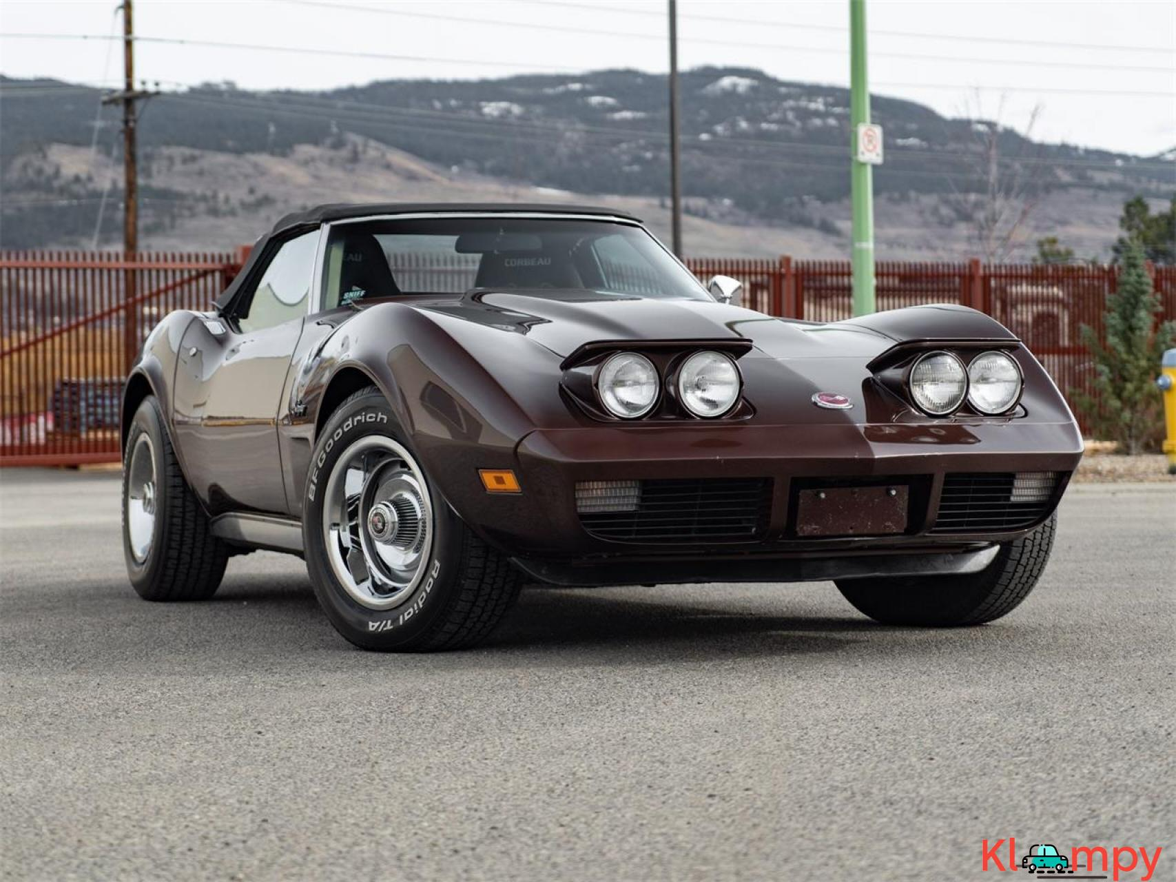 1974 Chevrolet Corvette Pheonix 350ci Crate Engine - 1/20