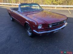 1966 Ford Mustang GT Convertible 302 - Image 1/20