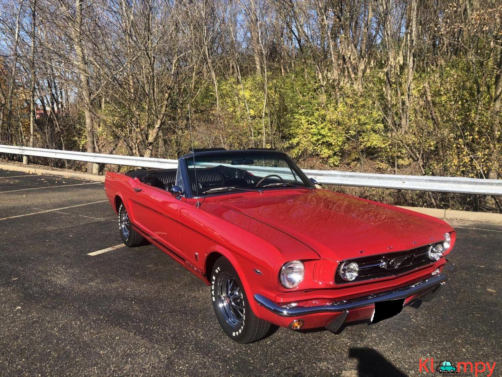 1966 Ford Mustang GT Convertible 302 - 16/20