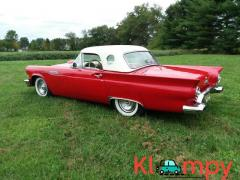 1957 Ford Thunderbird Convertible 312 - Image 3/14