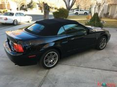 2003 Ford Mustang SVT Cobra SUPERCHARGED